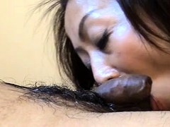 Naughty Oriental lady pleasing a small cock with her mouth