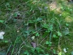 Play with dick in forest
