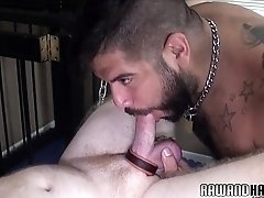 Chubby bear cums while rimmed by hairy hunk