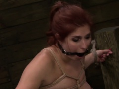 Bdsm slaves pussy caned